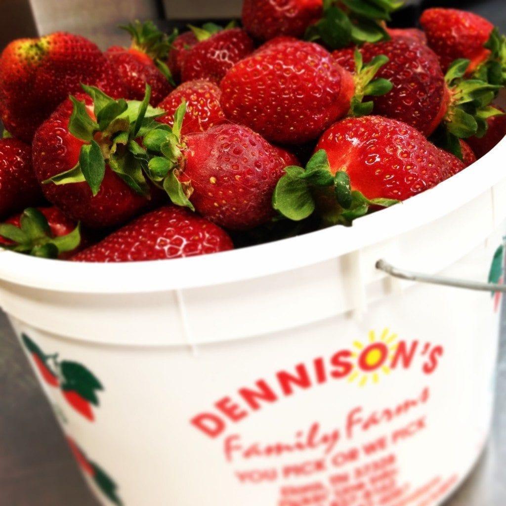 Farm Fresh Strawberries from Dennison's Family Farm